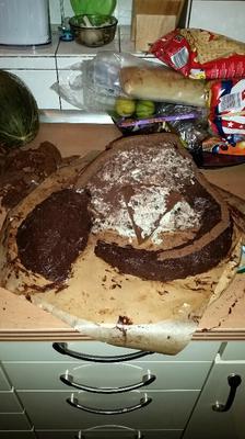Dino Kuchen - Entstehung 2